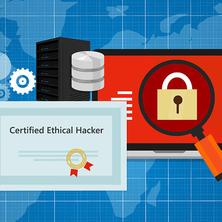 ethical-hacker800